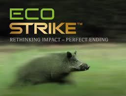 Norma Ecostrike.  30-06/150 grs